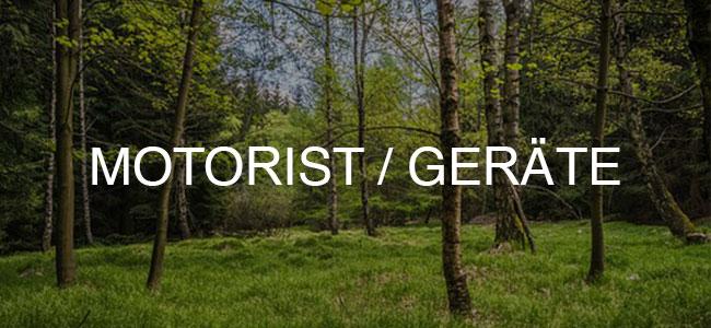 Wald mit viel Moos und Bäumen ist Button verlinkt zu dtm-software.de/de/motoristen/